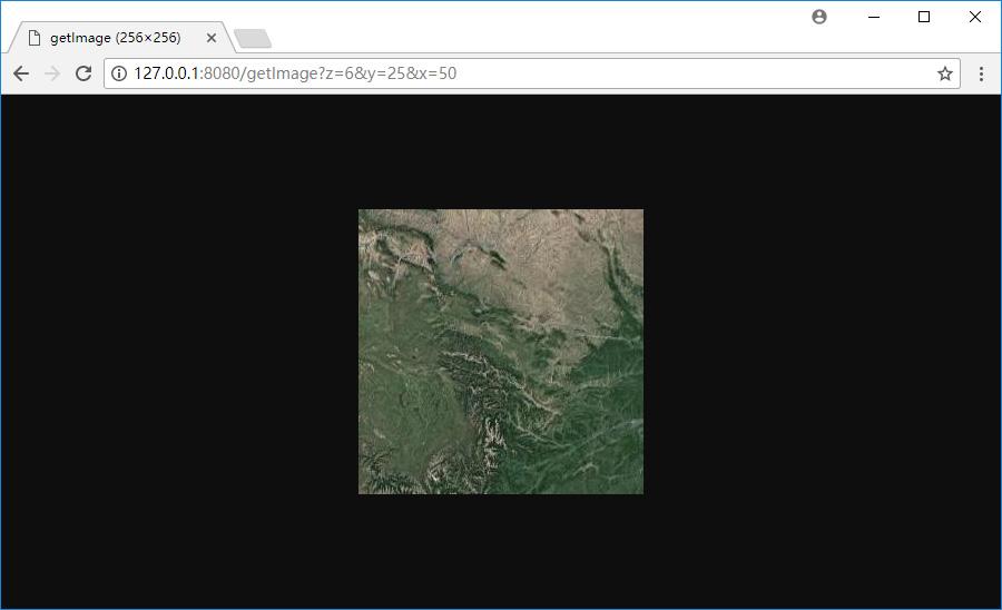 9打开影像瓦片URL.jpg